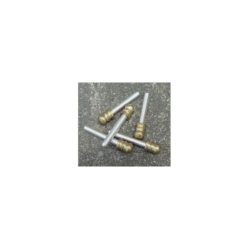 Tornillo de plata 925 con cabeza dorada