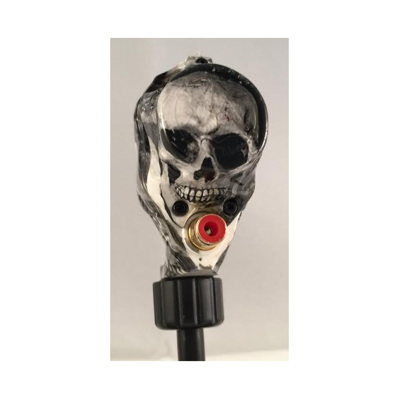 Art Driver Skull