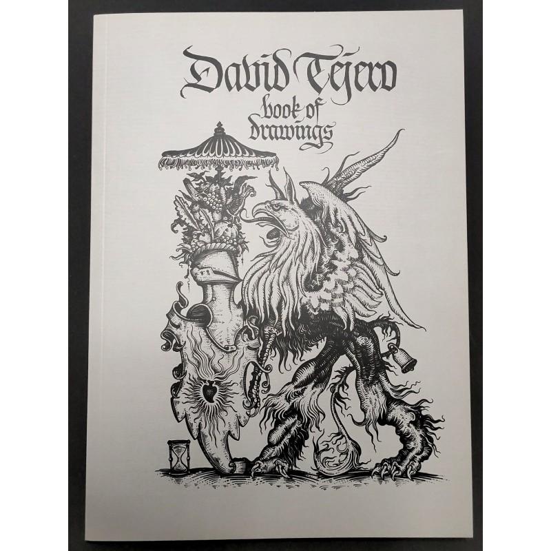 DAVID TEJERO. BOOK OF DRAWINGS